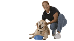 Get in Touch! | Jabil Kennels  - Concord,NH
